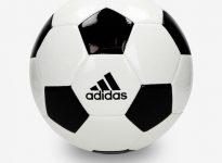 Inglaterra Varana national league